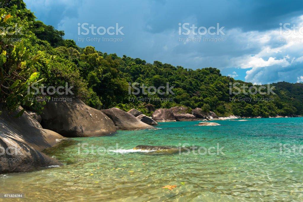 Tropical Brazilian Beach stock photo