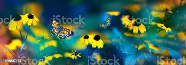 Tropical butterflies and yellow bright summer flowers on a background picture id1196837451?b=1&k=6&m=1196837451&s=612x612&h=hx2qqo7 cew0llxz2frgwisjbbnqkf bbwzcwsis6me=