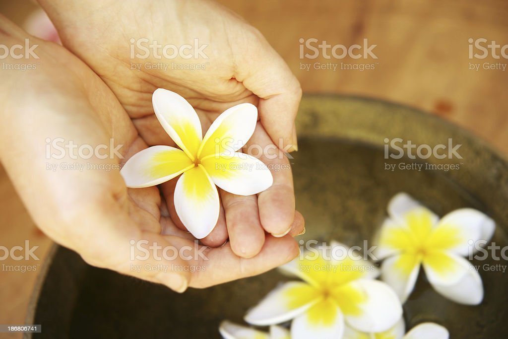 Tropical Care royalty-free stock photo