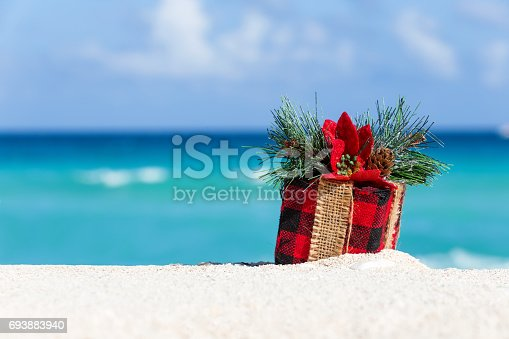 istock Tropical celebration 693883940