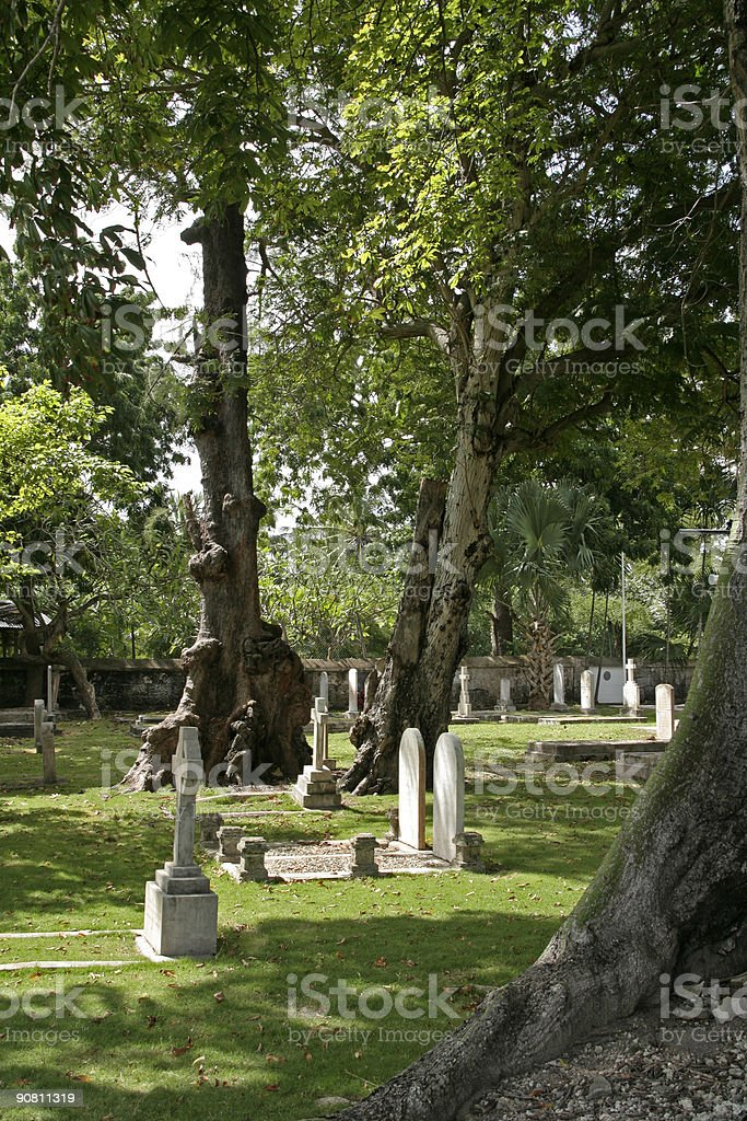 Tropical Cemetery royalty-free stock photo