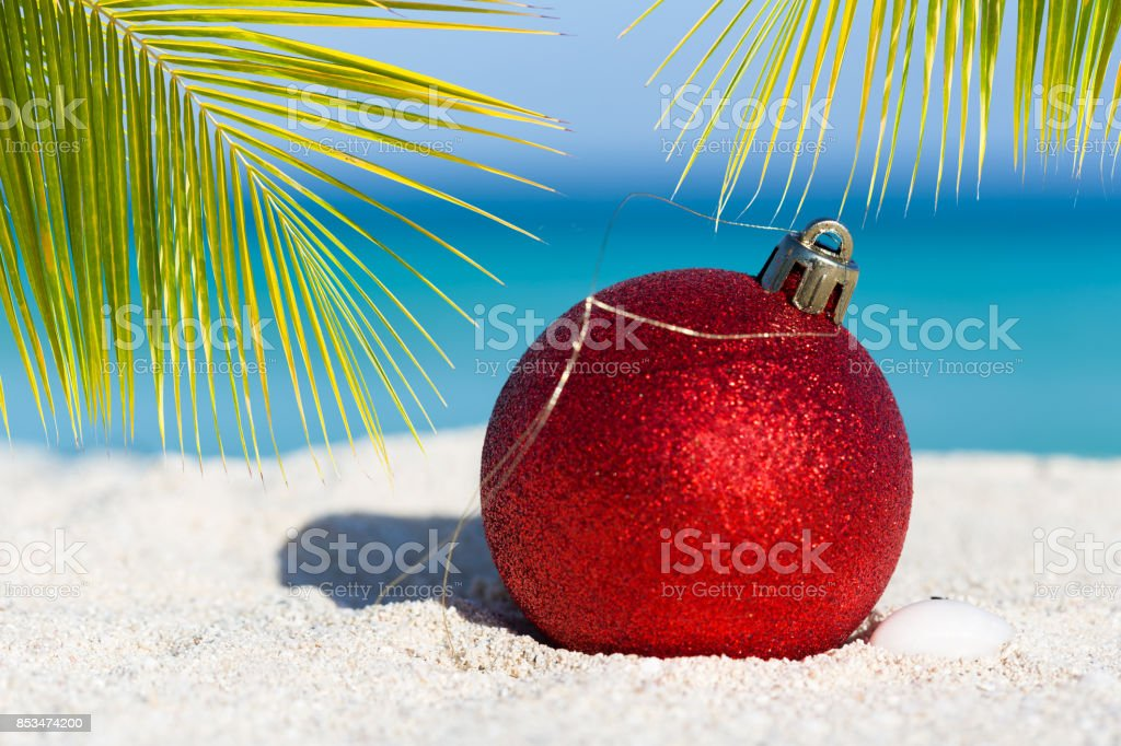 Tropical Christmas.Tropical Christmas And New Year Celebration Stock Photo More Pictures Of Beach
