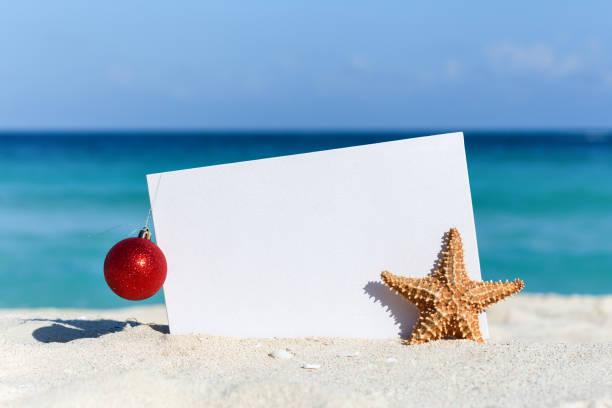Tropical christmas celebration stock photo