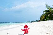 Red starfish standing on white sandy beach with santa hat