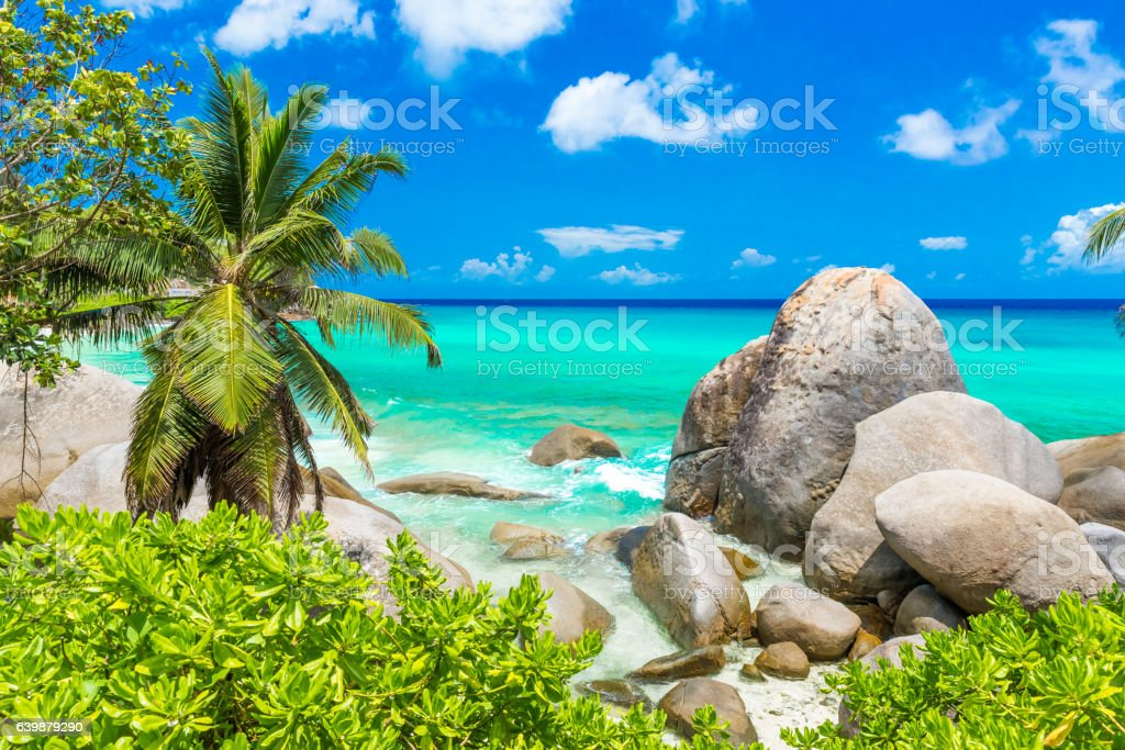 Tropical coast in Seychelles, Mahe stock photo
