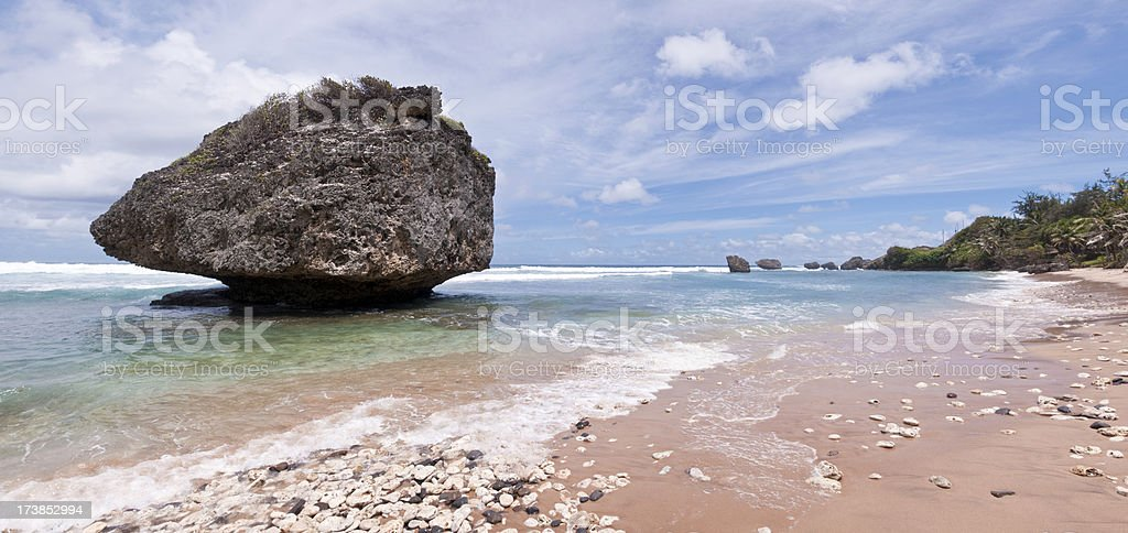 Tropical Coast royalty-free stock photo