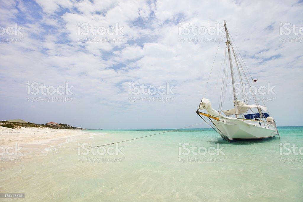 Tropical coast stock photo