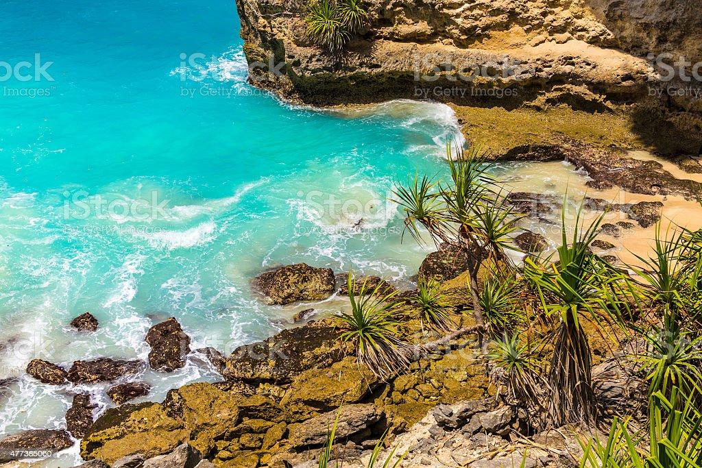 Tropical coastline. stock photo