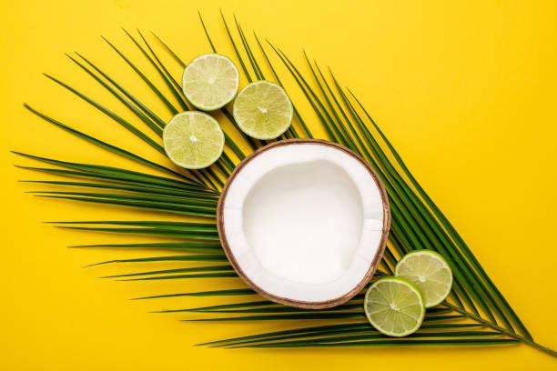tropisk kokosnöt, palm och lime på gul bakgrund - cactus lime bildbanksfoton och bilder