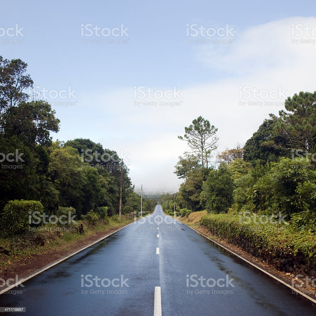 Tropical Country Road royalty-free stock photo