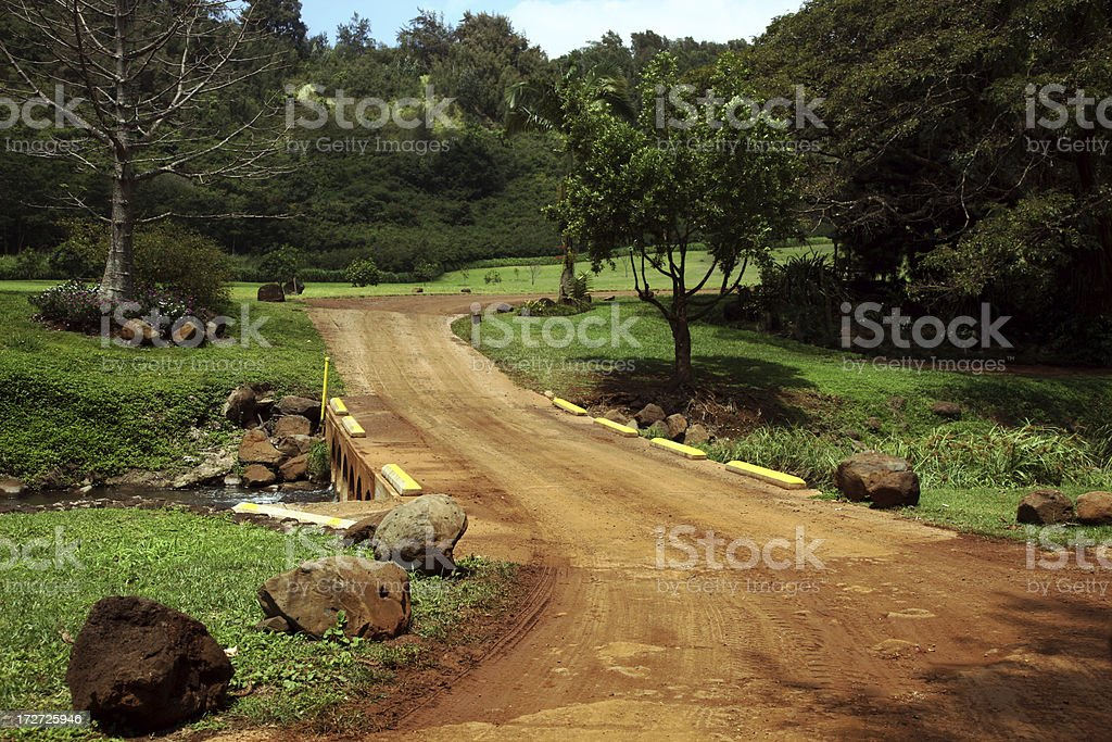 Tropical Country Road XXL stock photo