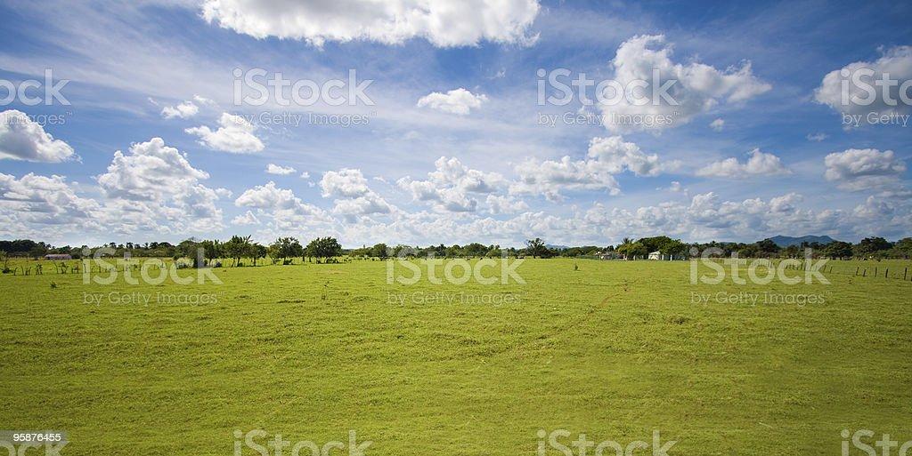 トロピカルな田園地帯とパスチュアスカイ - カラフルのロイヤリティフリーストックフォト