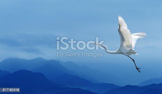 istock Tropical crane over blue sky 517162416