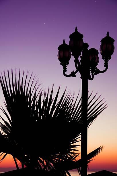 Tropische dawn – Foto