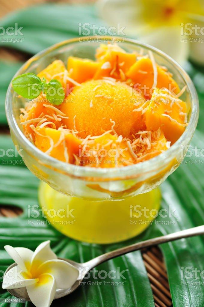 Tropical Dessert royalty-free stock photo