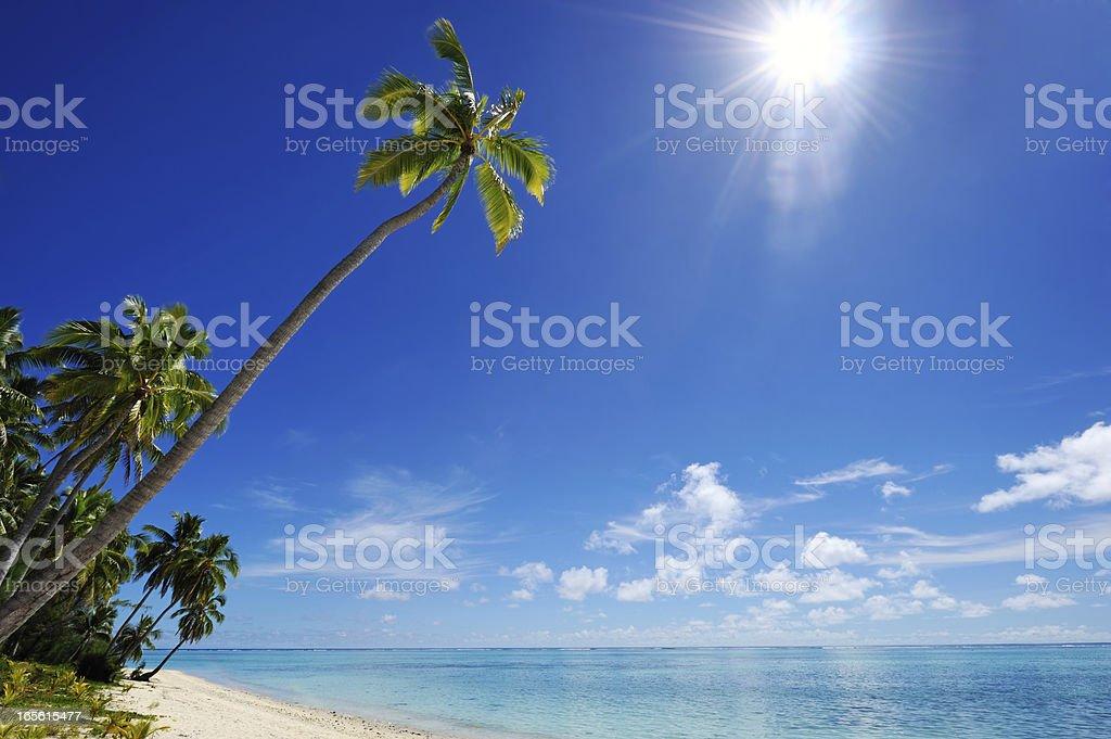 tropical dream beach royalty-free stock photo
