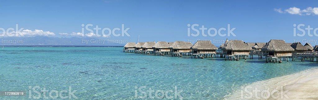 Tropical Dream (XXL) royalty-free stock photo
