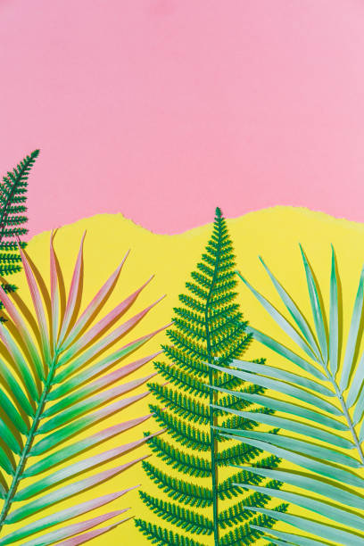 Tropical fern and palm leaves branches on pink and yellow torn paper background. Vertical summer theme concept with empty space for text