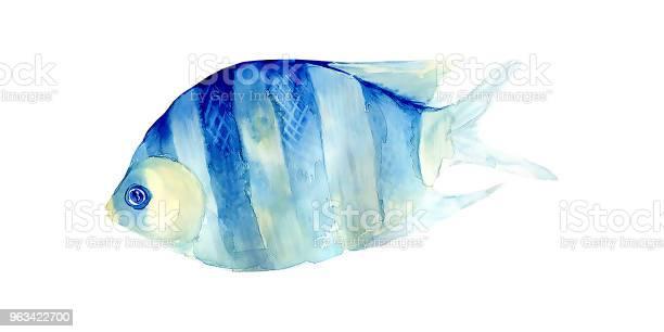 Tropikalna Ryba Na Białym Tle Malowanie Akwarelą - zdjęcia stockowe i więcej obrazów Abstrakcja