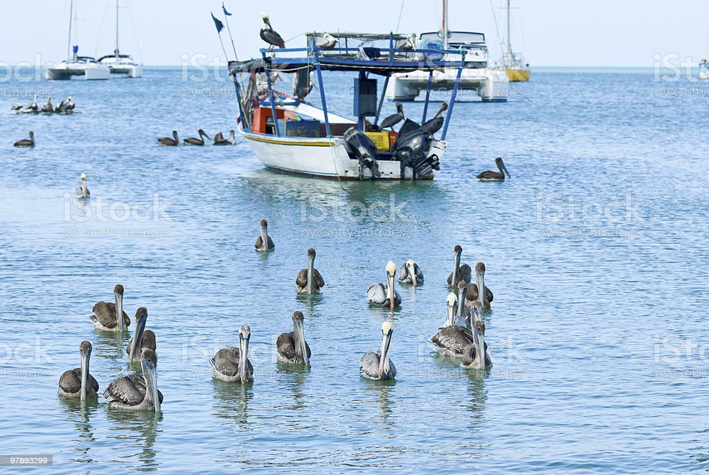 Tropical Fisherman's boat royalty-free stock photo