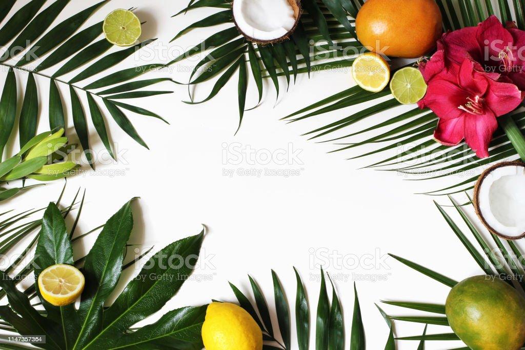 Tropical floral and exotic fruit frame, web banner. Coconut, lemons,...