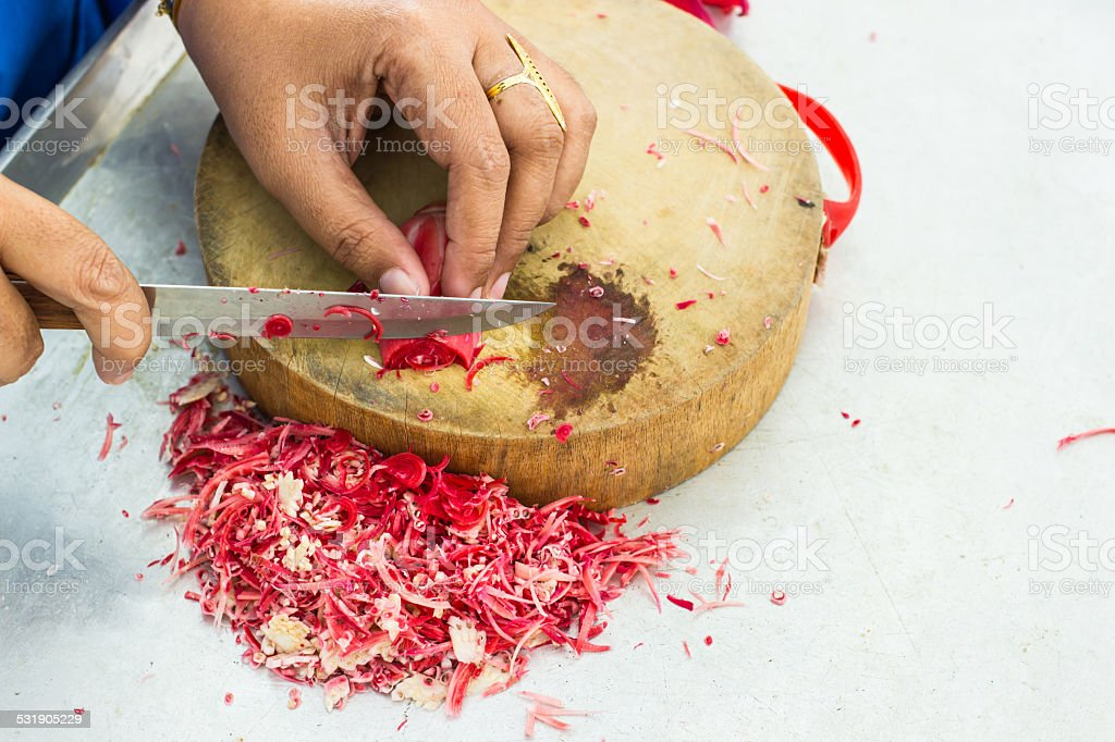 Tropical flower of cutting ginger. stock photo