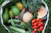 istock Tropical food basket 175504369
