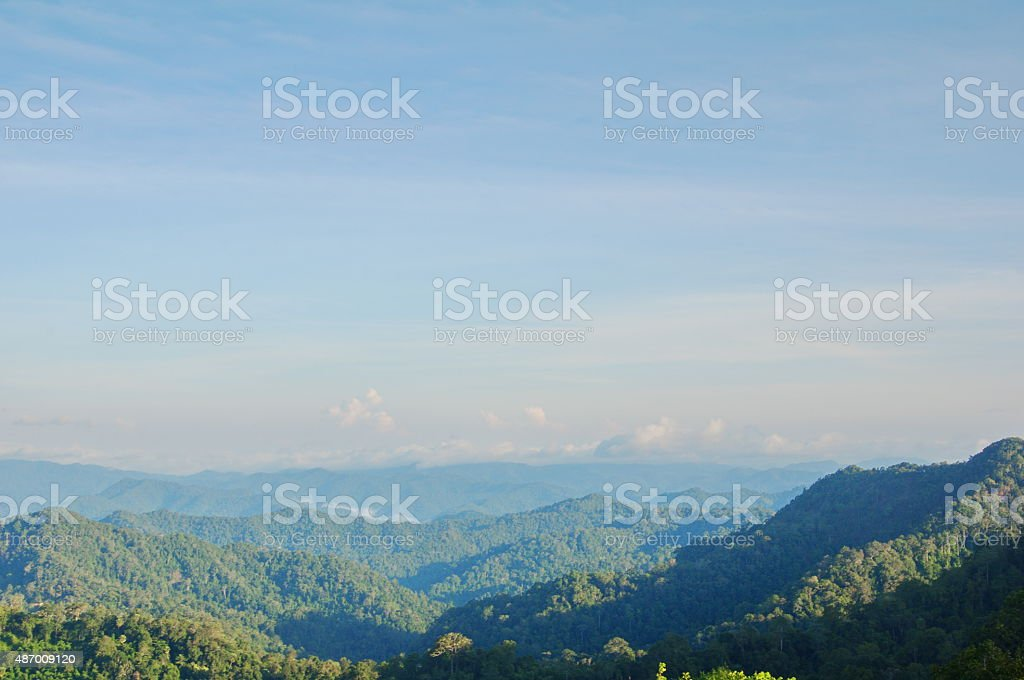 tropical forest and cloudscape stock photo