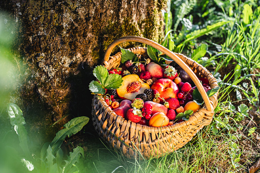 Tropical fruits in a wicker basket
