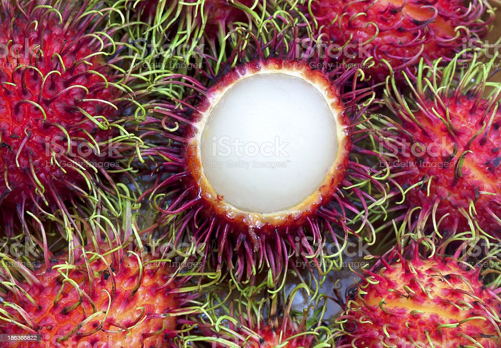 Tropical Fruits Rambutan royalty-free stock photo