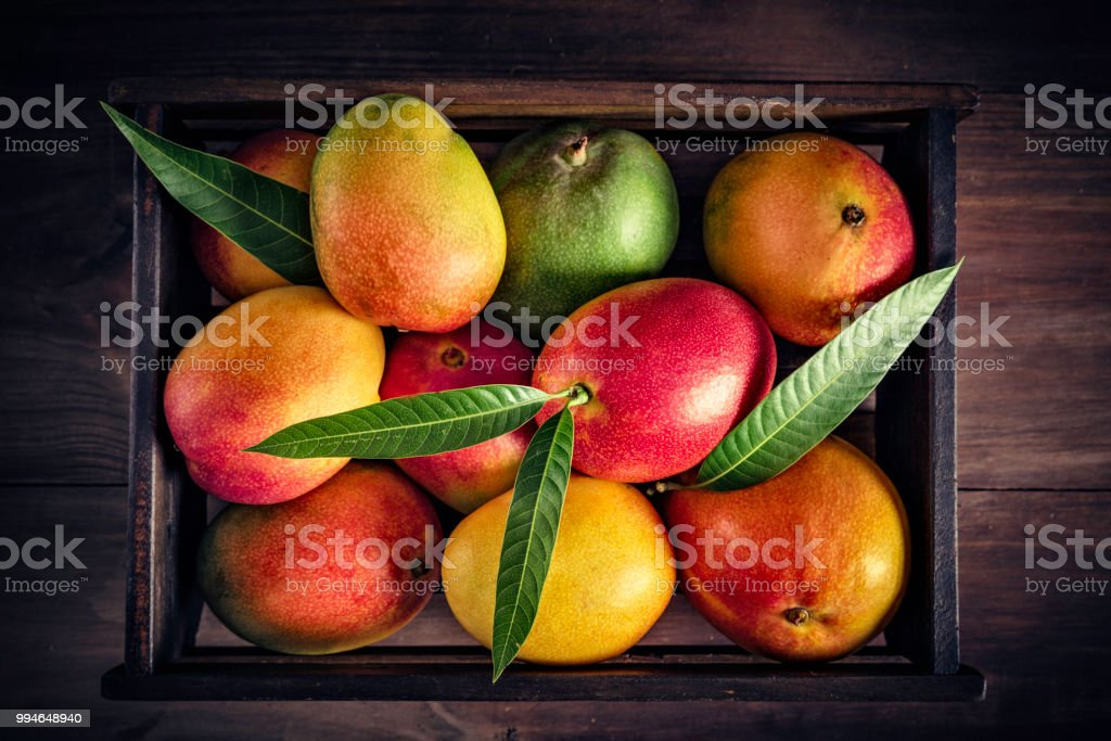 Tropical fruits: Wooden crate with assorted mangos in rustic kitchen. Natural lighting stock photo