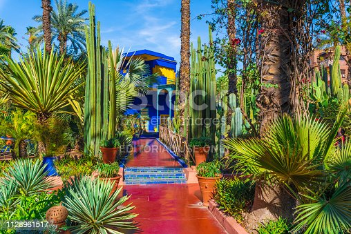 Marrakech, Morocco - November  12, 2017:Le Jardin Majorelle, amazing tropical garden in Marrakech, Morocco.