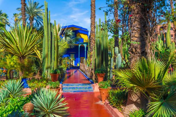 Tropical garden at Le Jardin Majorelle