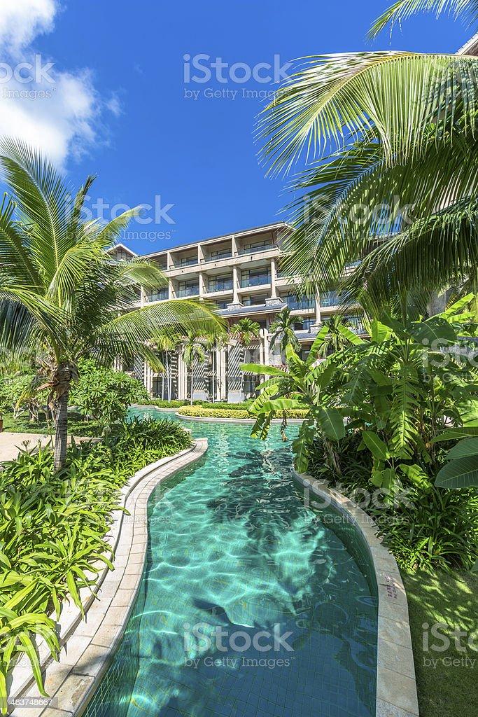 Tropical garden royalty-free stock photo