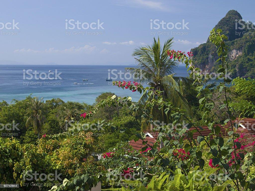 Tropischen Garten Lizenzfreies stock-foto