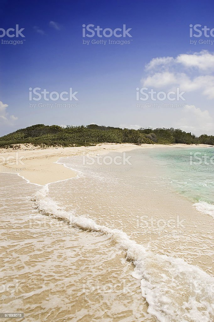 Tropical Golden Sand Beach royalty-free stock photo