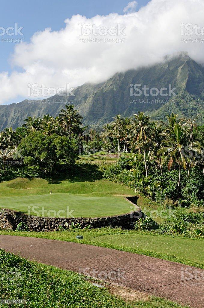 Tropical Golf stock photo