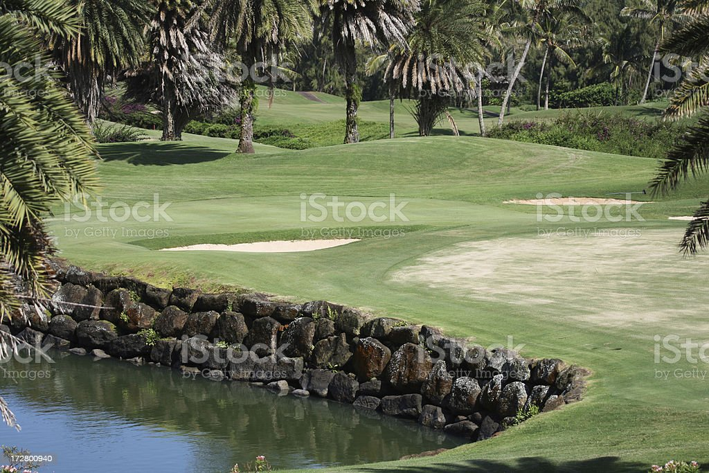 Tropical Golf stock photo