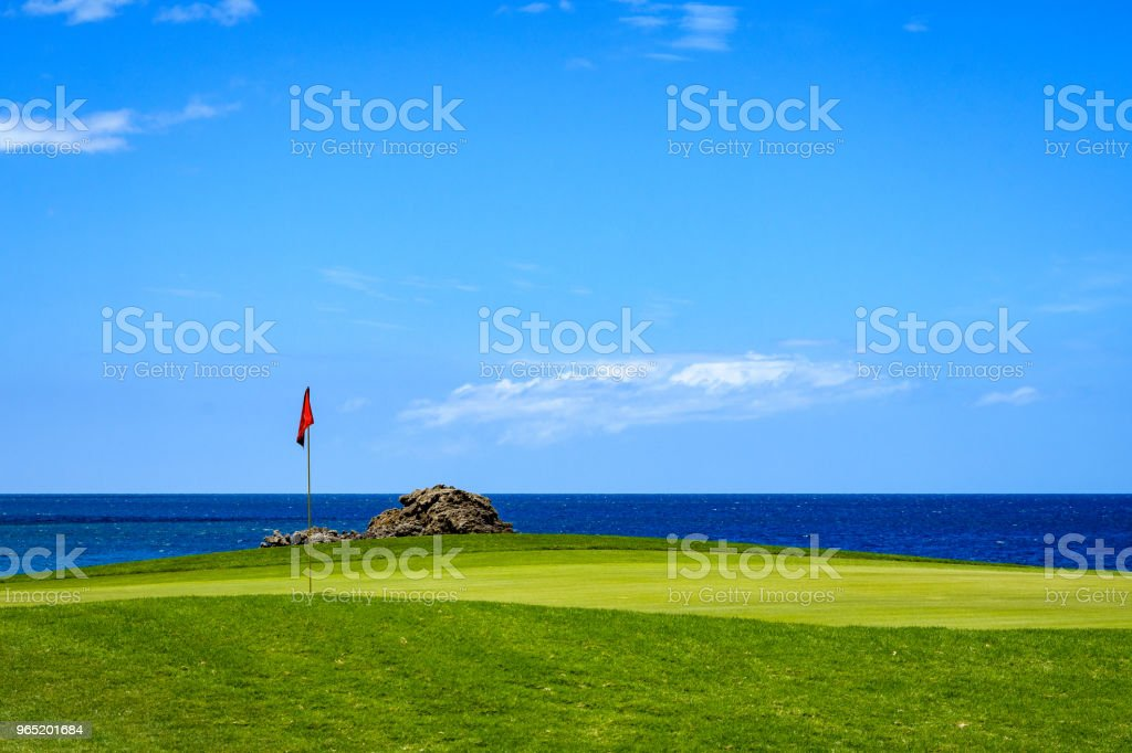 Tropical Golf zbiór zdjęć royalty-free