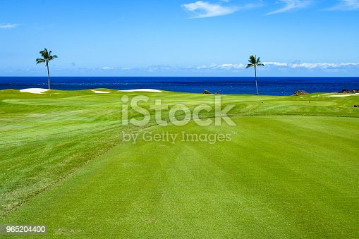 Tropical Golf Stock Photo & More Pictures of Big Island - Hawaii Islands