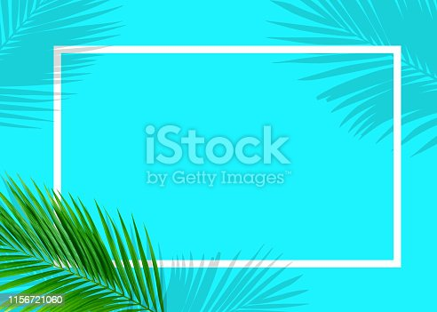 655667160 istock photo Tropical green monstera leaves nature on blue background with frame design 1156721060