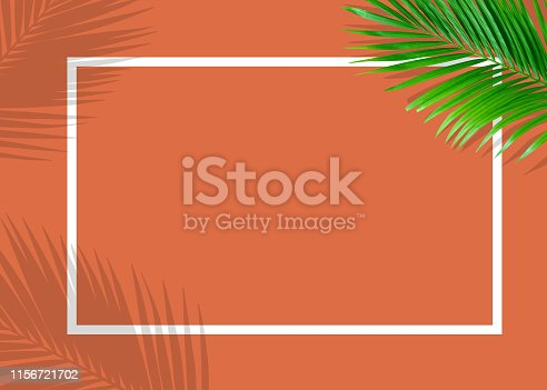655667160 istock photo Tropical green monstera leaves nature on orange background with frame design 1156721702