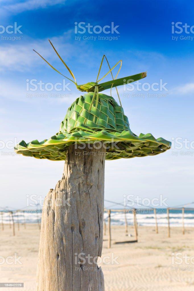 Tropical Hat - Grasshopper royalty-free stock photo