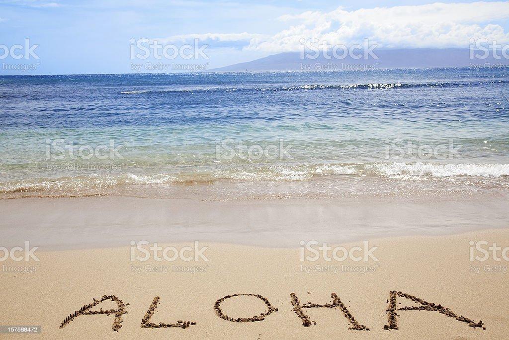 ハワイのビーチの海スカイタイプ ALOAH のバケーション ストックフォト