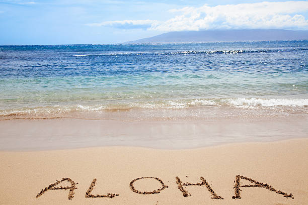 Tropical Hawaiian beach ocean sky type ALOAH welcome vacation stock photo