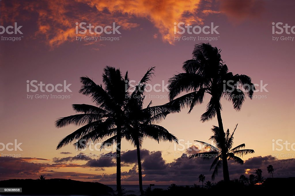 Tropical Hawaiian Sunset royalty-free stock photo