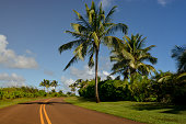 Empty, winding highway on island of Kauai, Hawaii.