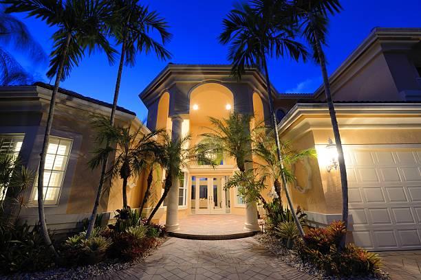 tropische zu hause - palmengarten stock-fotos und bilder
