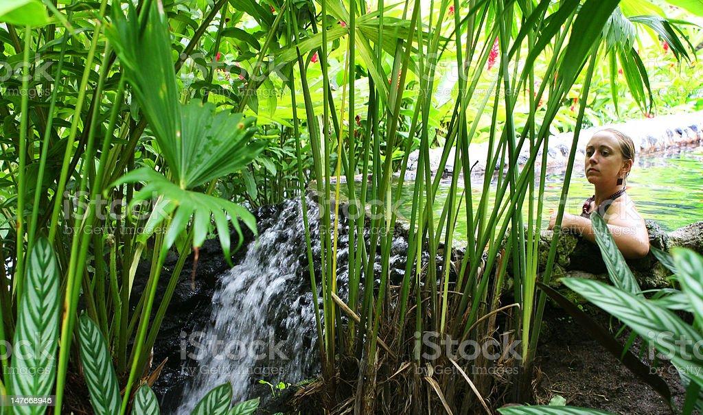 Tropical Hot Springs Pool stock photo