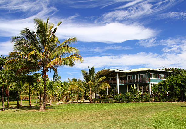 tropical house and palm trees on kauai hawaii - hawaii home stock photos and pictures